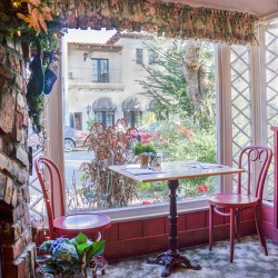 Garden View at The Cottage Restaurant